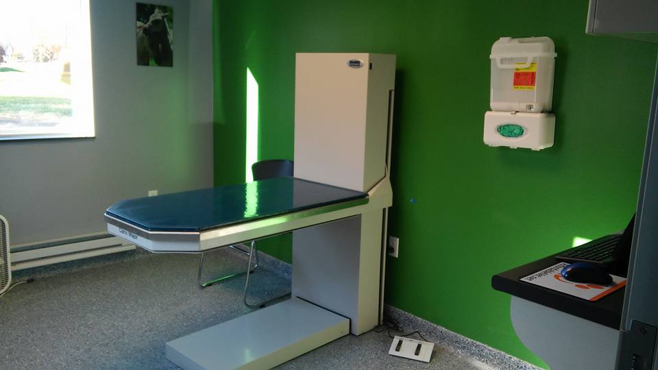 A Step Up Veterinary Clinic - Bethel Park, PA